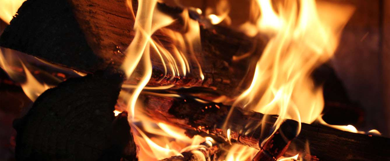 Ogień w lesie a prawo